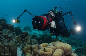 Jonathan Bird filming underwater